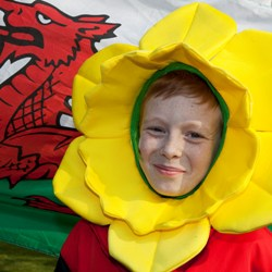 BIG has awarded over £4m to promote the Welsh language