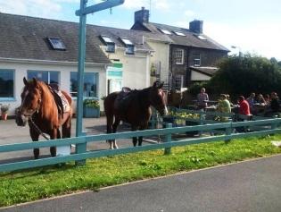 Traws Cambria Horse Ride at Siop Cynfelyn pic 32.jpg