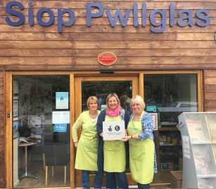Giving Pwllglas the Plaque Factor