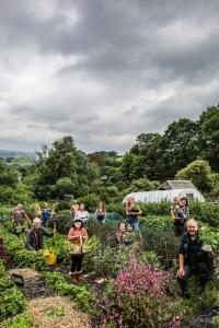 Mach Maethlon - Machynlleth community gardening